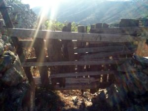 sunlight through a typical gate